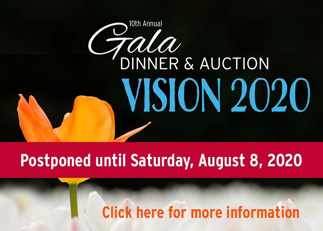 2020 ILB Gala event Apr art